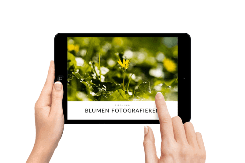 EBOOKS FOTOGRAFIE
