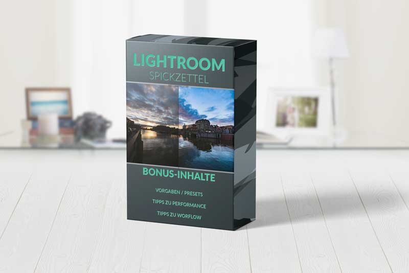 Gratis Lightroom Presets Vorgaben ebook